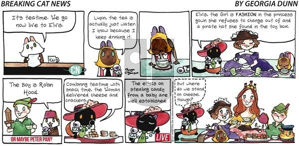 Breaking Cat News - Sunday May 10, 2020 Comic Strip