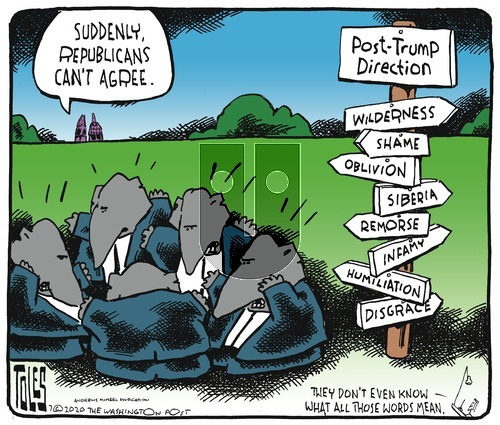 Tom Toles on Sunday July 26, 2020 Comic Strip