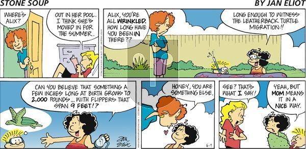 Stone Soup on Sunday June 9, 2013 Comic Strip