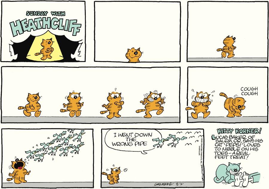 Heathcliff Comic Strip for August 02, 2020