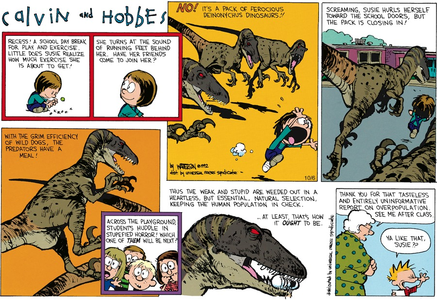 Calvin and Hobbes Comic Strip for November 29, 1992