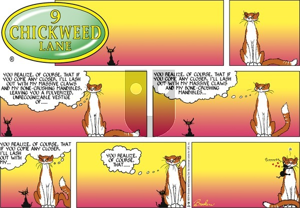9 Chickweed Lane on Sunday March 16, 2014 Comic Strip