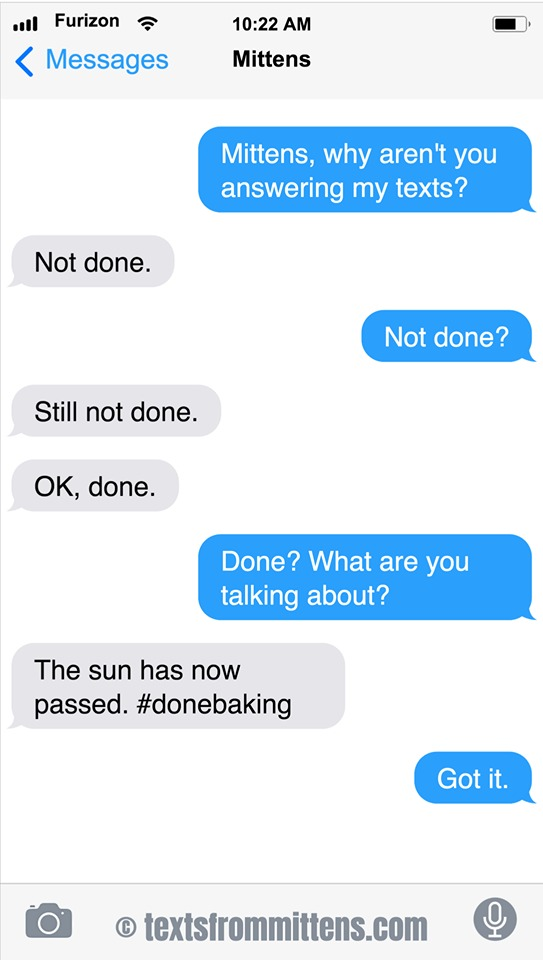 Texts From Mittens by Angie Bailey on Sun, 05 Jul 2020