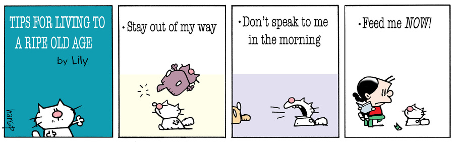 Ten Cats Comic Strip for July 10, 2017