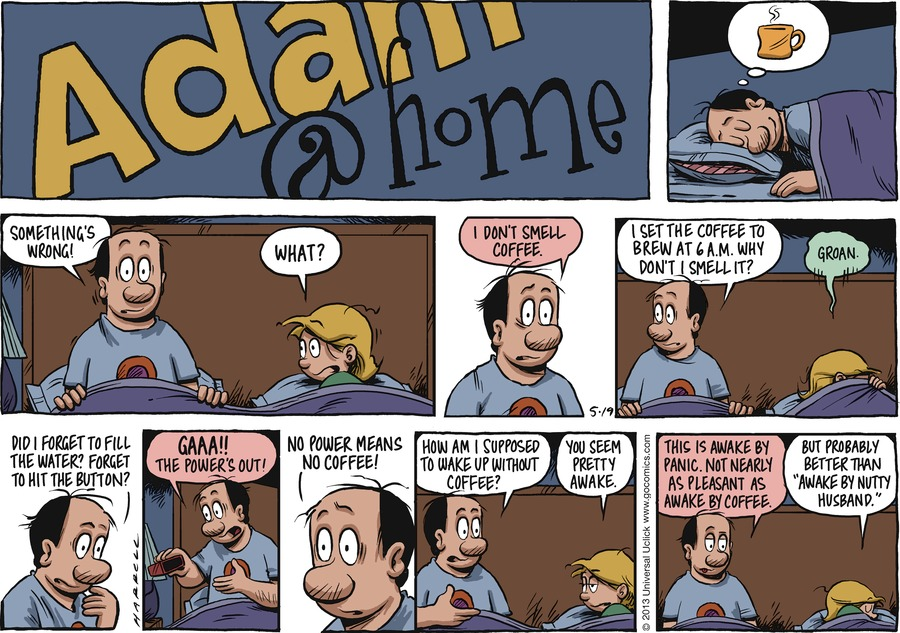 Adam@Home for May 19, 2013 Comic Strip