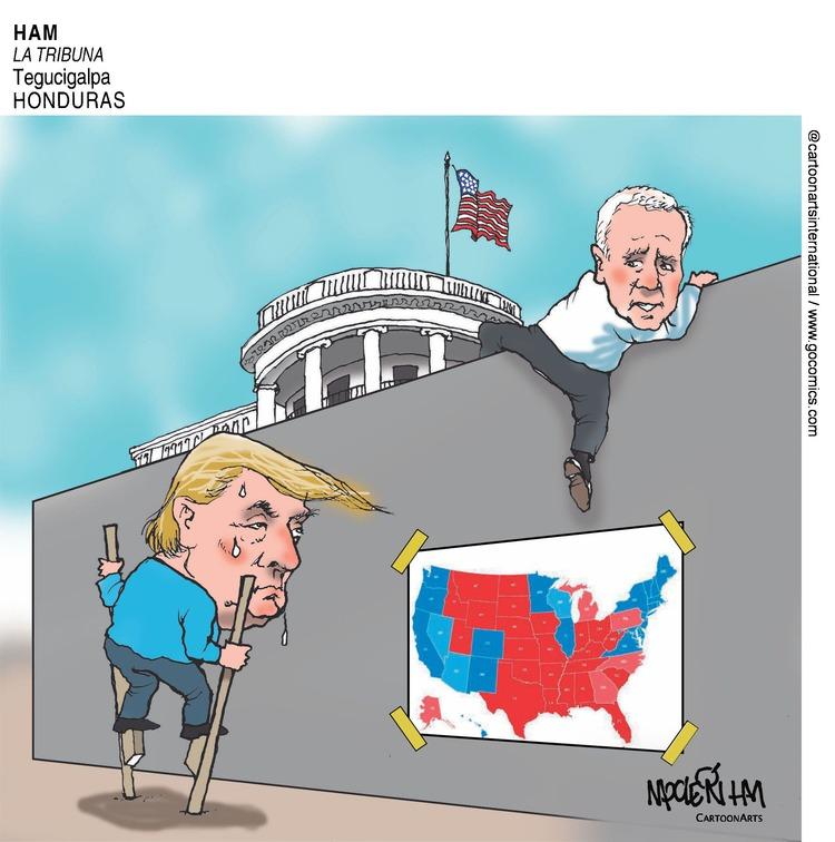 ViewsAmerica Comic Strip for December 06, 2020