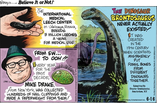 Ripley's Believe It or Not on Sunday June 16, 2013 Comic Strip