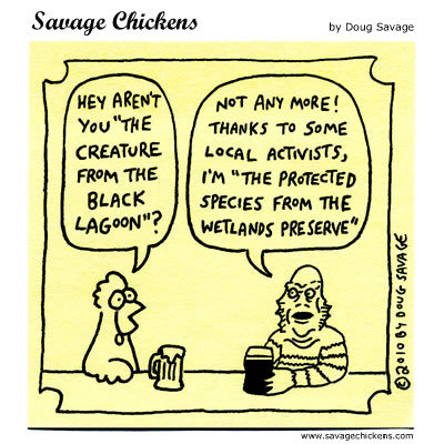 """Chicken: Hey aren't you """"The Creature from the Black Lagoon?""""  Creature: Not any more! Thanks to some local activists, I'm """"The protected species from the Wetlands Preserve"""""""