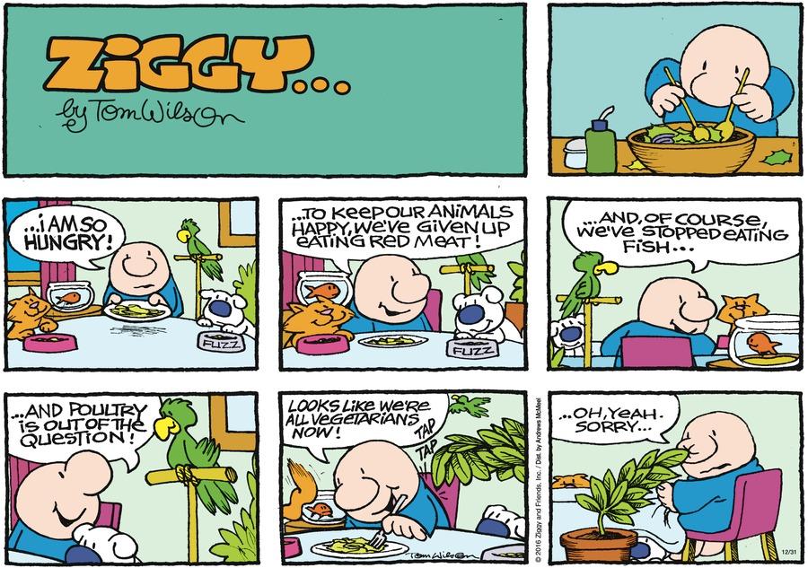 Ziggy Comic Strip for December 31, 2017