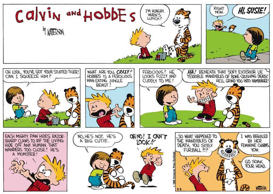 Hobbes: I'm hungry. When's lunch? Calvin: Right now. Hi, Susie! Susie: Oh look, you've got your stuffed tiger! Can I squeeze him? Calvin: What are you, crazy? Hobbes is a ferocious man-eating jungle beast! Susie: Ferocious? He looks fuzzy and cuddly to me! Calvin: Ha! Beneath that soft exterior lie terrible mandibles of bone-crushing death! He'll grind you into hamburger! Each mighty paw hides razor-sharp claws to rip the living hide off any human that wanders too close! He's a monster! Susie: No, he's not. He's a big cutie. Calvin: Oh no! I can't look!! Calvin: ...So what happened to the mandibles of death, you sissy furball?!? Hobbes: I was beguiled by her feminine charms. Yow. Go soak your head.