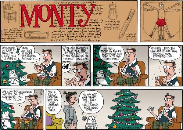 Monty on Sunday December 18, 2016 Comic Strip