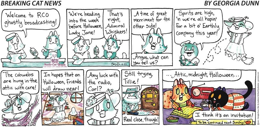 Breaking Cat News by Georgia Dunn on Sun, 24 Oct 2021