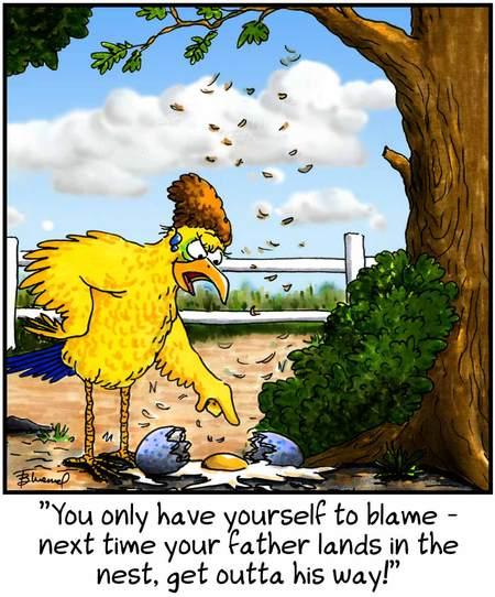 Birdbrains for Jul 15, 2013 Comic Strip