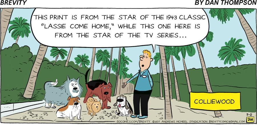 Brevity for Jul 2, 2017 Comic Strip