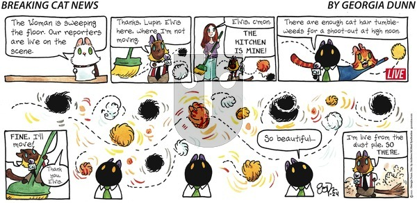 Breaking Cat News on Sunday January 24, 2021 Comic Strip
