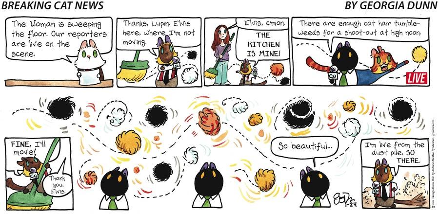 Breaking Cat News Comic Strip for January 24, 2021