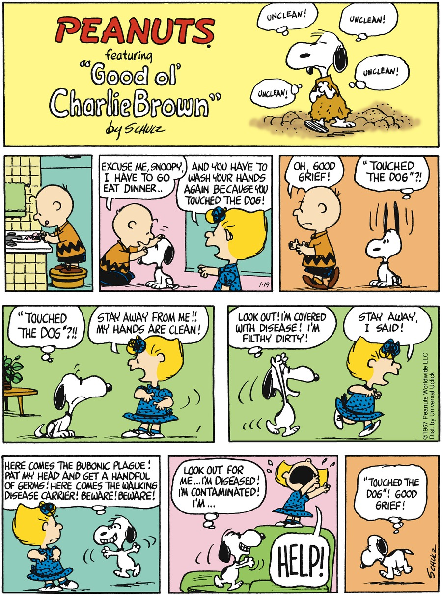 Peanuts Comic Strip for January 19, 2014