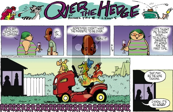 Over the Hedge on Sunday June 20, 2021 Comic Strip