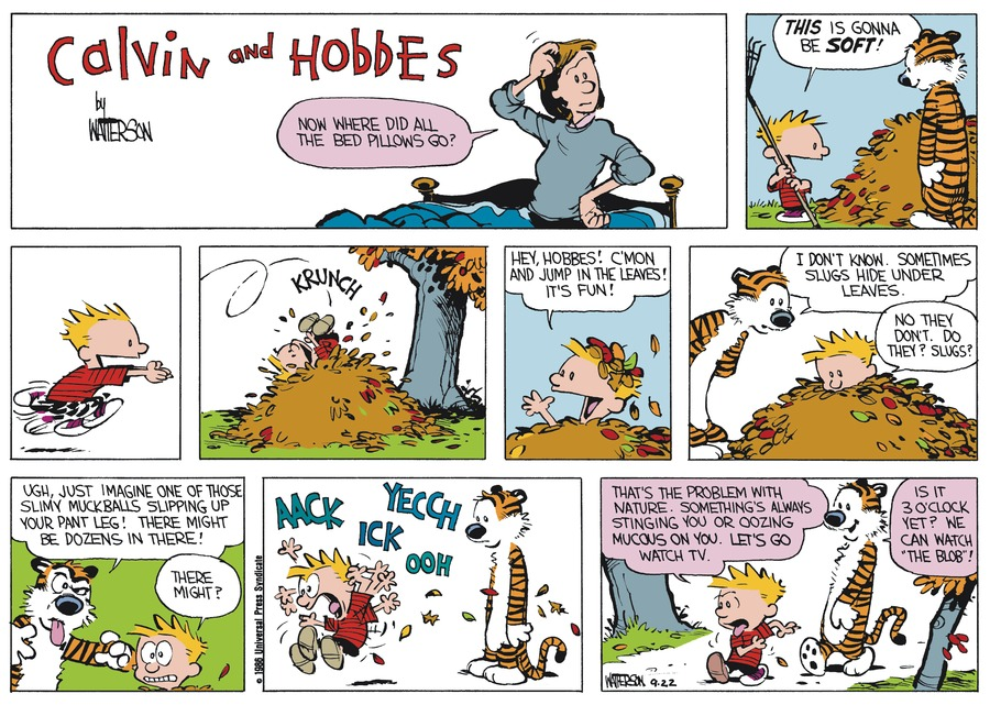 Calvin and Hobbes Comic Strip for October 19, 1986