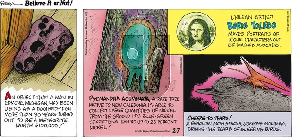 Ripley's Believe It or Not on Sunday February 7, 2021 Comic Strip