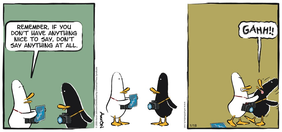 W.T. Duck Comic Strip for January 18, 2009