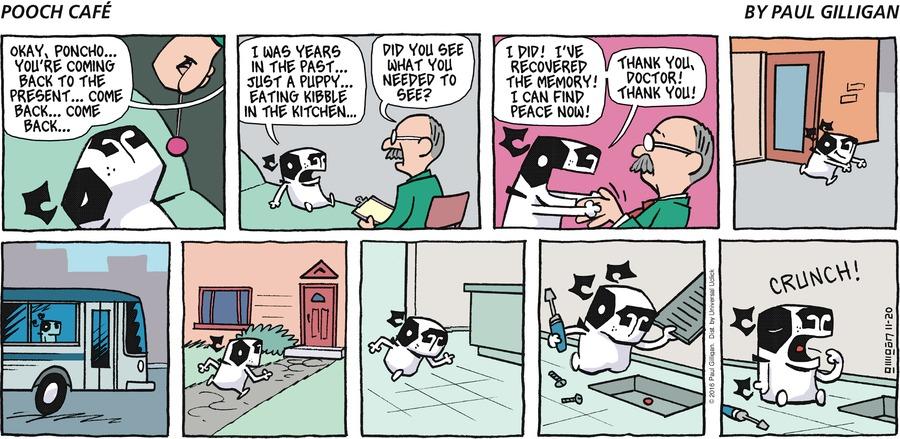 Pooch Cafe Comic Strip for November 20, 2016