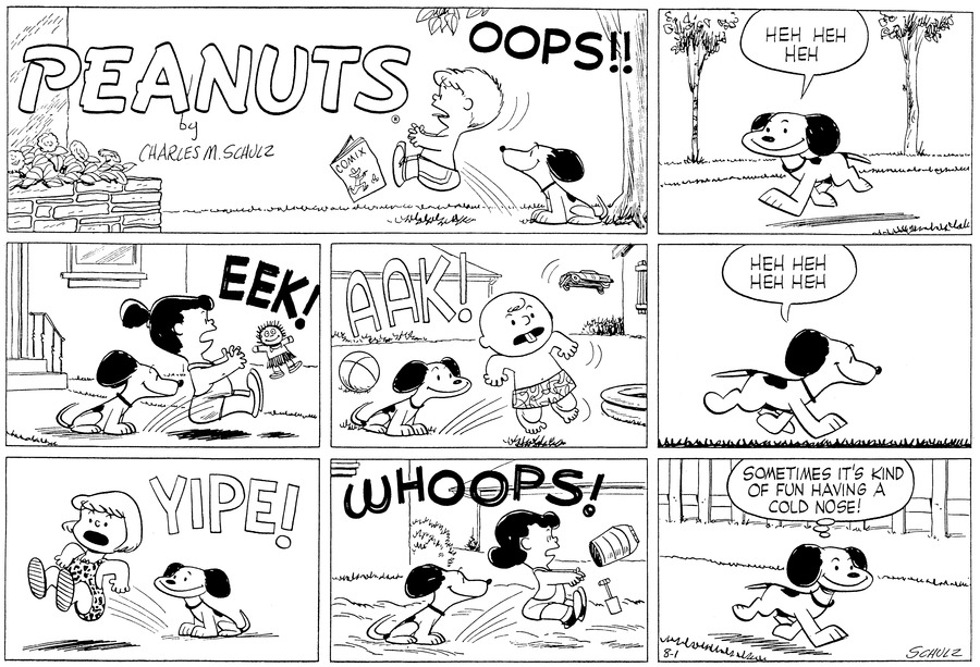 Peanuts for Aug 1, 1954 Comic Strip