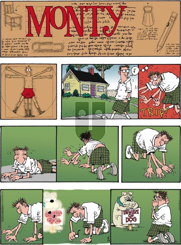 Monty - Sunday June 28, 2020 Comic Strip