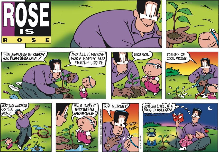 Rose is Rose for Mar 25, 2018 Comic Strip