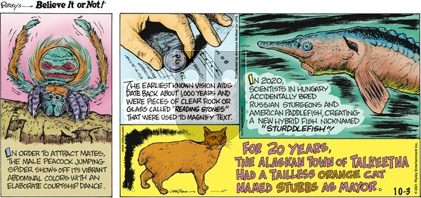 Ripley's Believe It or Not on Sunday October 3, 2021 Comic Strip