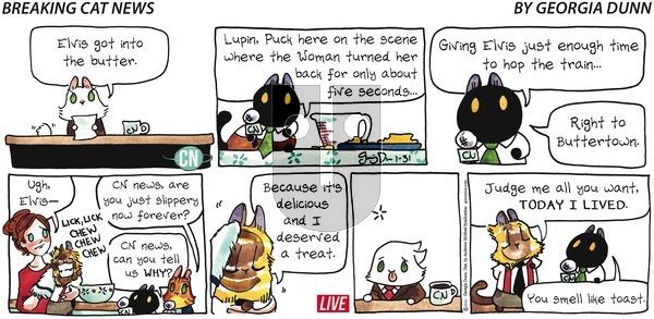 Breaking Cat News on Sunday January 31, 2021 Comic Strip