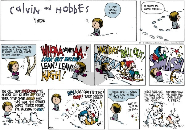 Calvin and Hobbes - Sunday February 9, 2020 Comic Strip