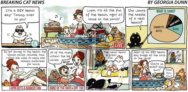Breaking Cat News on Sunday July 7, 2019 Comic Strip