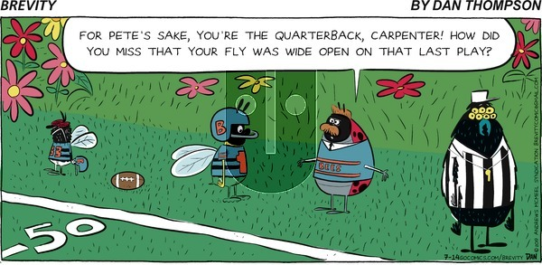 Brevity on Sunday July 14, 2019 Comic Strip