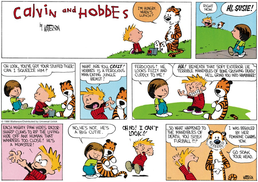 Calvin and Hobbes Comic Strip for October 02, 2016