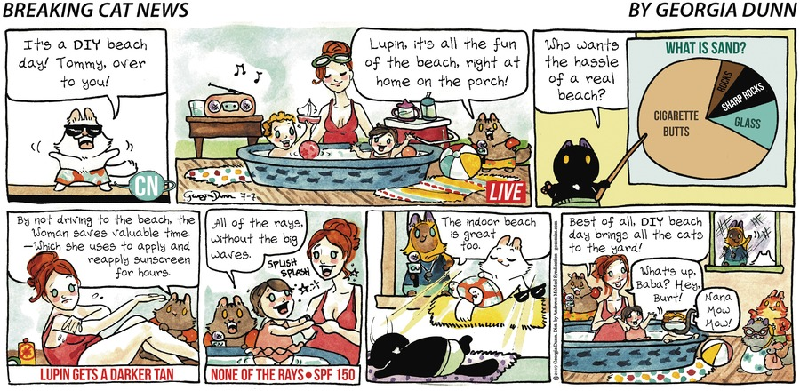 Breaking Cat News Comic Strip for July 07, 2019