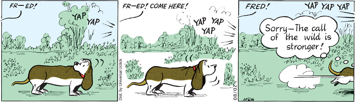 Fred Basset Comic Strip for August 02, 2011