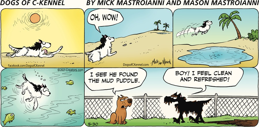 Dogs of C-Kennel Comic Strip for May 30, 2021