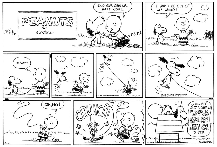 Peanuts Comic Strip for June 06, 1965