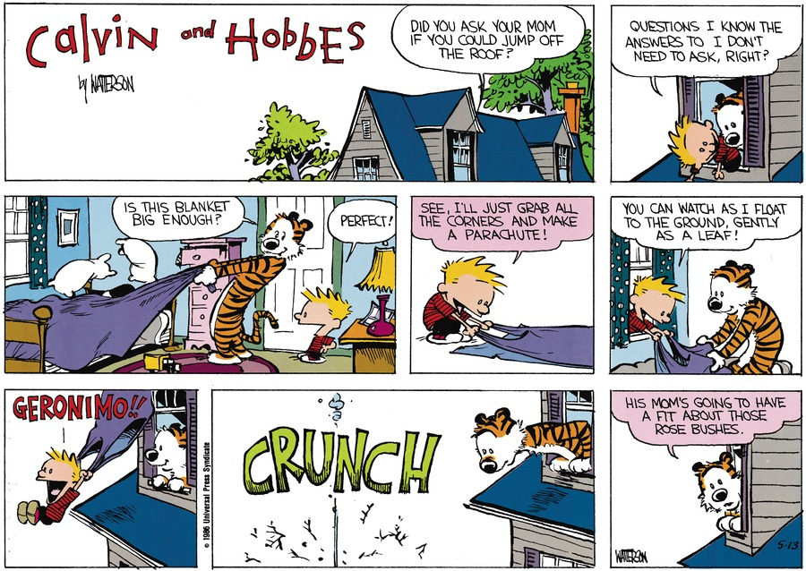Calvin and Hobbes Comic Strip for June 30, 1991