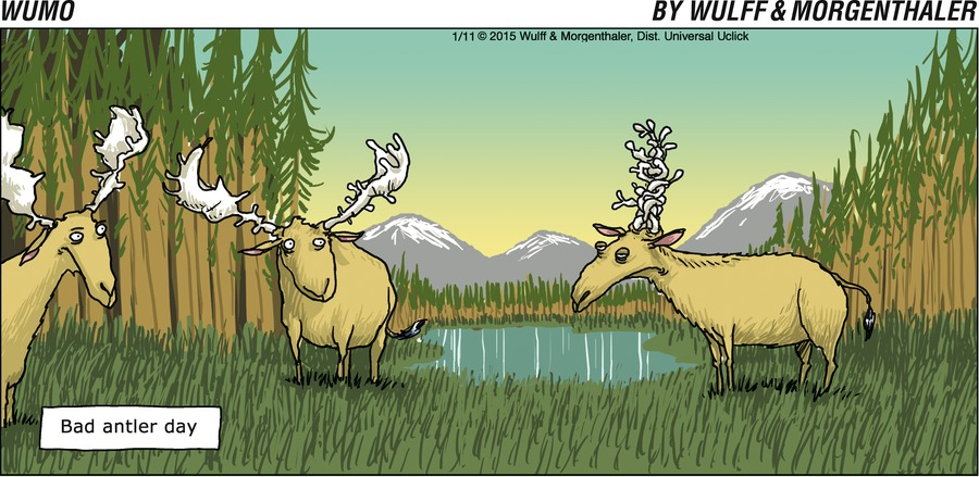WuMo for Jan 11, 2015 Comic Strip