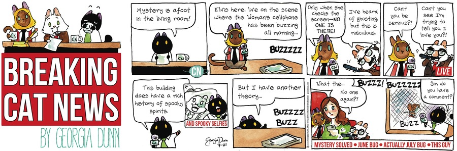 Breaking Cat News Comic Strip for July 21, 2019