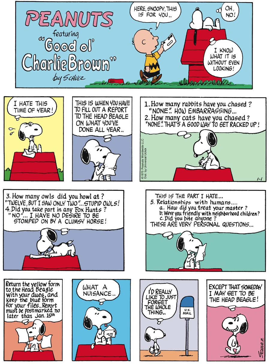 Peanuts Comic Strip for January 01, 2017