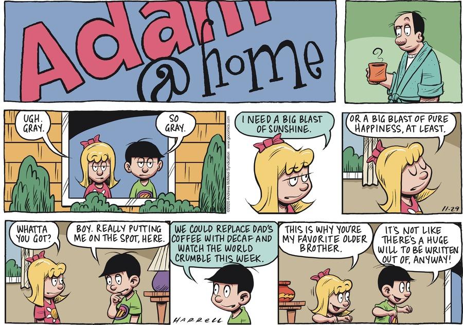 Adam@Home Comic Strip for November 29, 2020