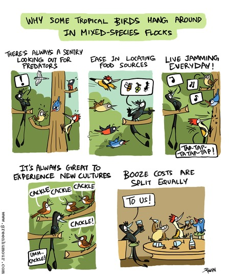 Green Humour Comic Strip for August 04, 2019