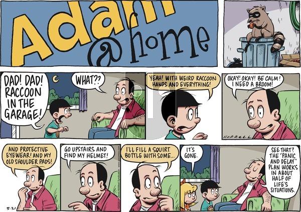 Adam@Home - Sunday May 31, 2020 Comic Strip