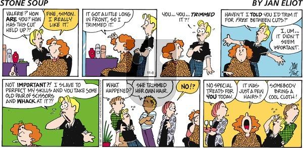 Stone Soup on Sunday November 8, 2020 Comic Strip