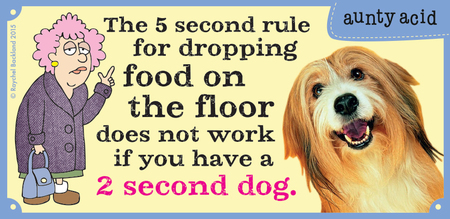 The 5 second rule for dropping food on the floor does not work if you have a 2 second dog.