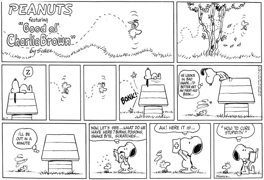 Peanuts for Jun 7, 1970 Comic Strip