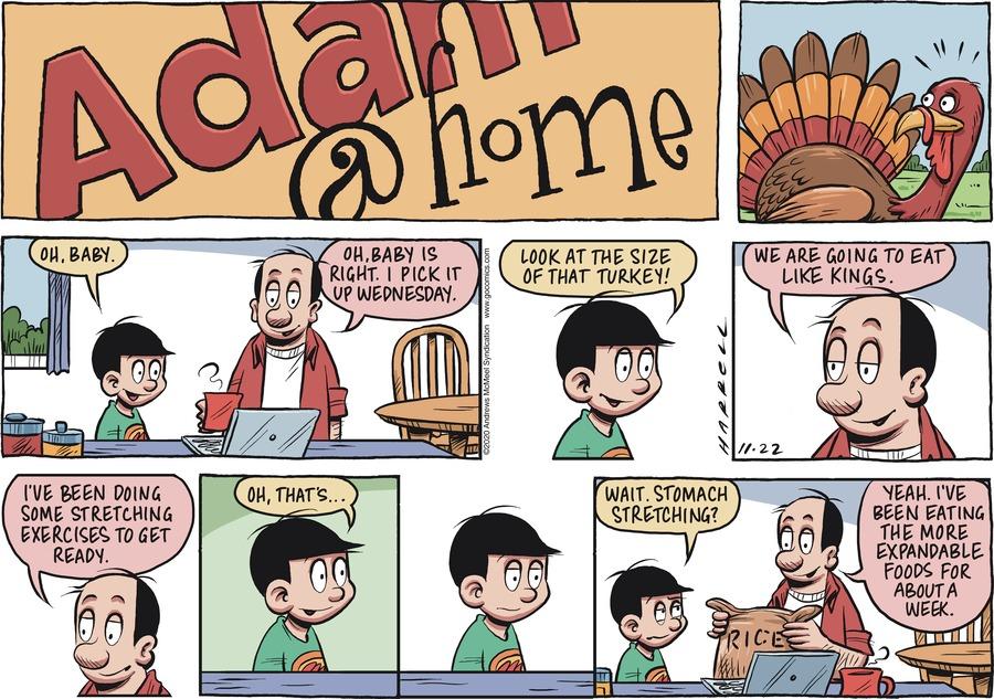 Adam@Home Comic Strip for November 22, 2020
